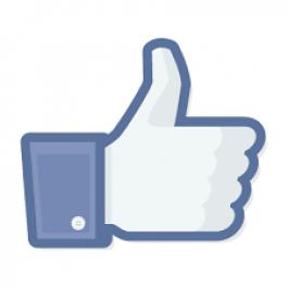Menambah 150+ Likes untuk FB Fanspage atau Posting FB Kamu