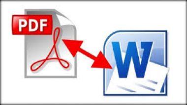 mengetik ulang PDF files kamu ke MS Word per 30 halaman