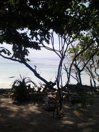 merekomendasikan tempat wisata di Jogja dan Lombok