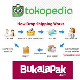 Cloning toko online suplier di Bukalapak dan Tokopedia beserta isi Produk