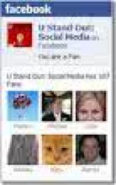 bikinkan Facebook Fans Page buat kamu dengan cepat