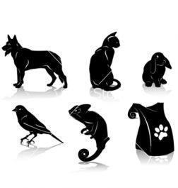 menjaga kucingmu, kelinci, kura-kura, hamster, burung, atau binatang peliharaan lain kecuali Anjing selama beberapa hari