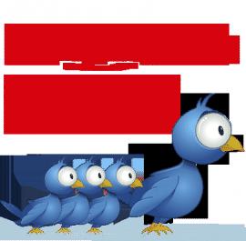 Mengirimkan 1.200 Follower Twitter Bot Indonesia