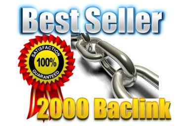Membuat 2000 Backlink,150 Edu Backlink dan Ping Domain anda