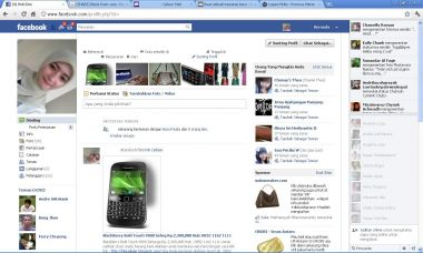 mempromosikan website bisnis anda ke 5000 orang perhari selama 25 hari via akun facebook saya