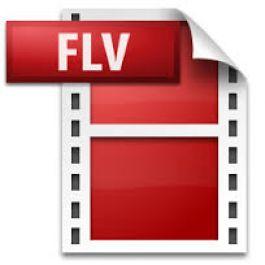 mengubah 10 video dengan format flv menjadi format .mp4