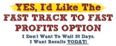 beri link download Fast Track To Fast Profits