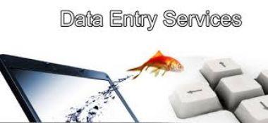 Entry Data atau mengetik 20 halaman