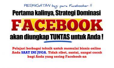 memberikan video facebook marketing domination