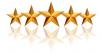 Memberikan rating / review bintang 5 untuk Google Maps,  Google Store,  dan Website